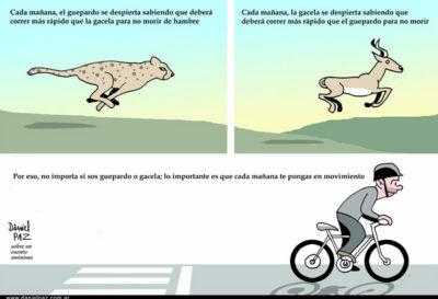 """""""guepardo_gacela"""" por Daniel Paz"""